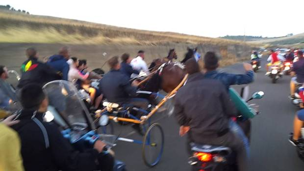 Un momento di una corsa di cavalli candestina a Catania, Italia (foto via @catania.meridionews.it)