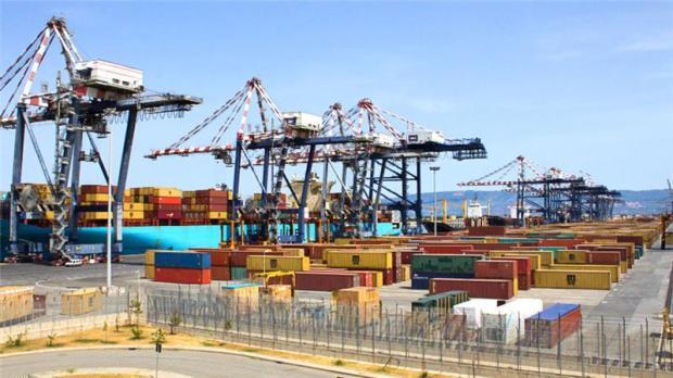 The Port of Goia Tauro (photo courtesy Antonella Corigliano)